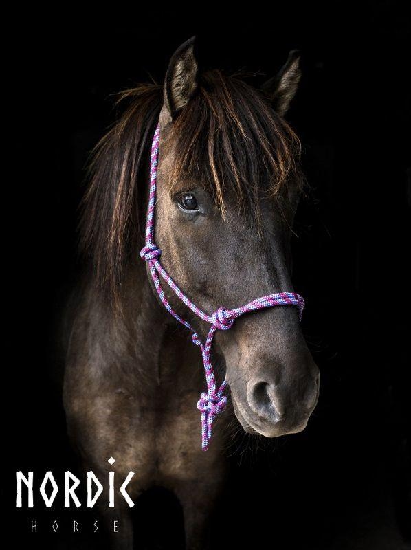 Nordic Horse Repgrimma Island