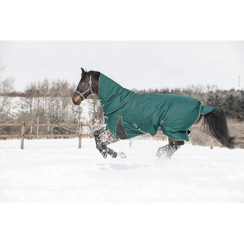 vintertäcke med hals häst