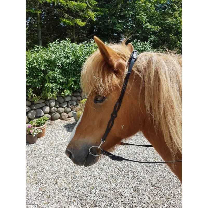 Nordic Horse Nackstycke m utskuret på sidorna 2