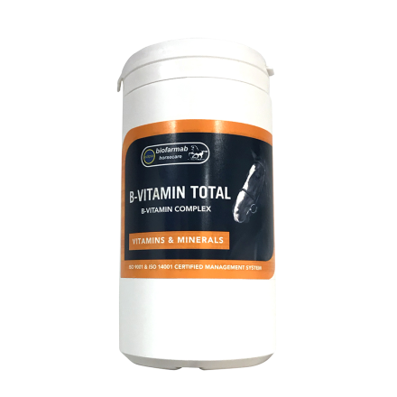 Biofarmab B-Vitamin Total 450g