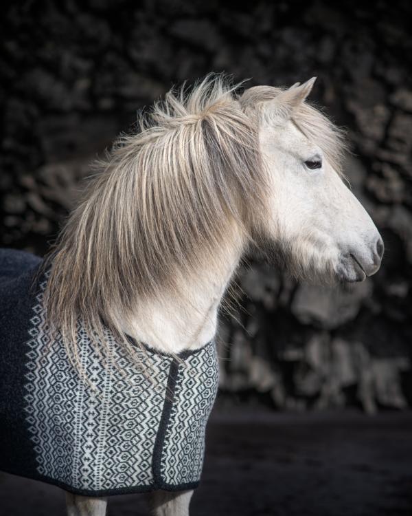 Kidka Hästtäcke Borg