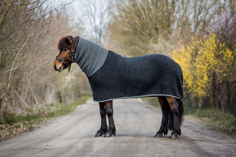 Kidka Hästtäcke med Hals svart/grå