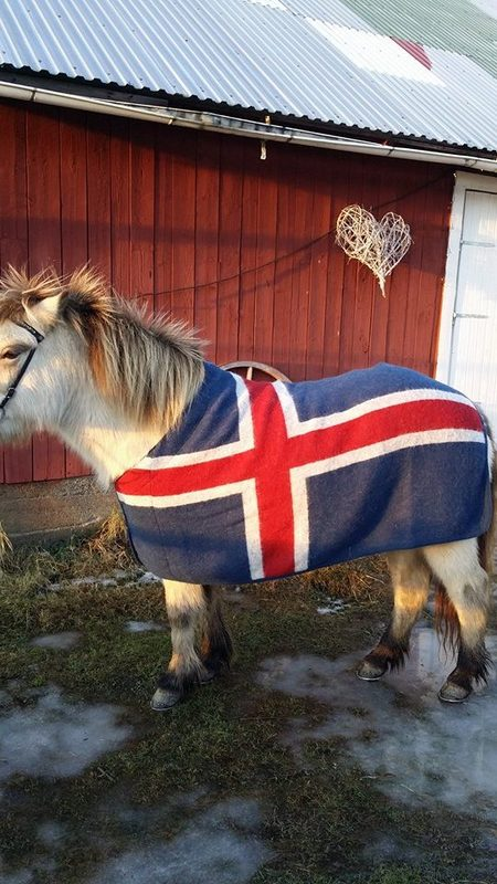 Ástund Ulltäcke Island